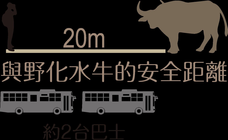人牛安全距離
