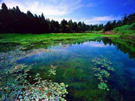 夢幻湖 (圖一).jpg