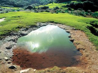 磺嘴池畔的小窪地 (陳志明攝)