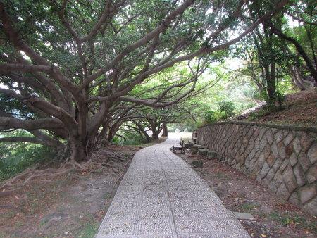 硫磺谷步道