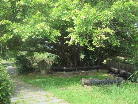 硫磺谷內木座椅休息區