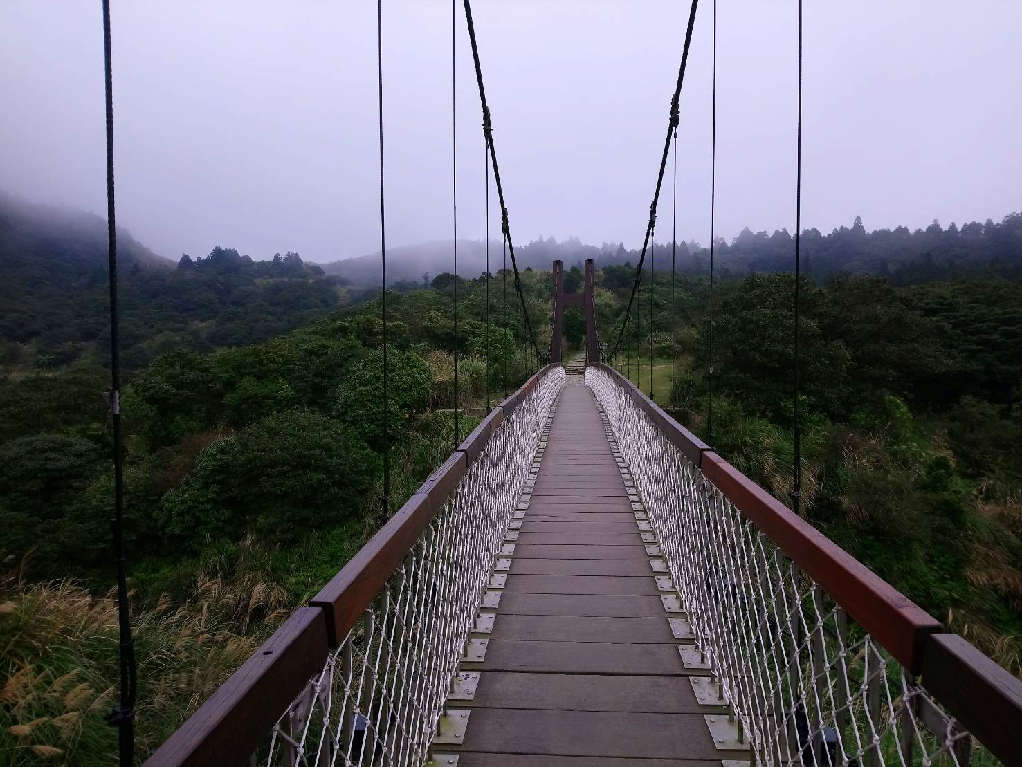 冷水坑菁山吊橋02